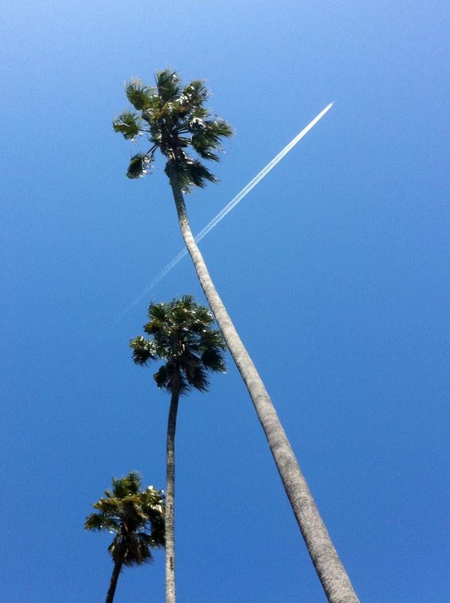 Three Palms & Jet Trail, Berkeley, CA 20 April 2013