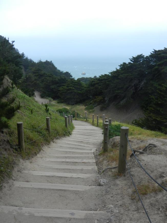 Main Path & Stairs, Land's End, San Francisco, 4 May 2013