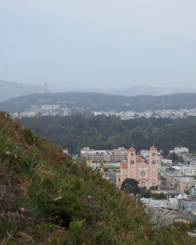 Golden Gate Bridge and St. Anne's Catholic Church, Viewed from the East Slope of Turtle Hill, San Francisco, California, 15 May 2013