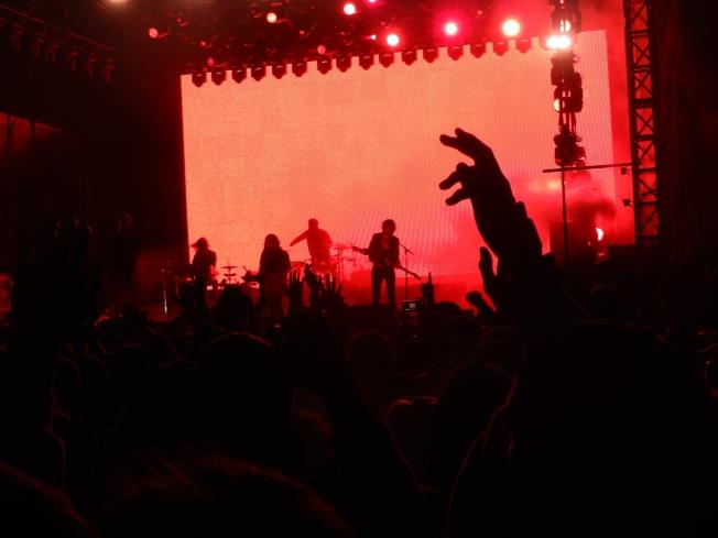 Phoenix - Red