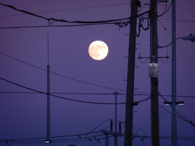 Medium Zoom In of Full Moon, 16 November 2013