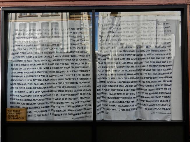 The Literary Shower Curtain, San Francisco, CA 23 November 2013
