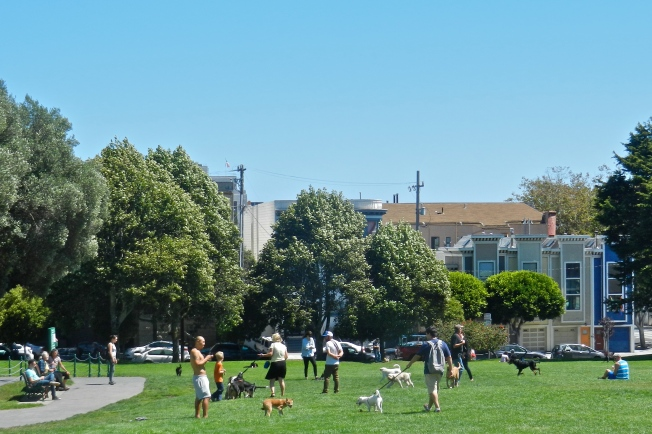 San Francisco Homeowners & Renters with Their Dogs, Duboce Triangle Dog Park, San Francisco, California, 30 August 2014