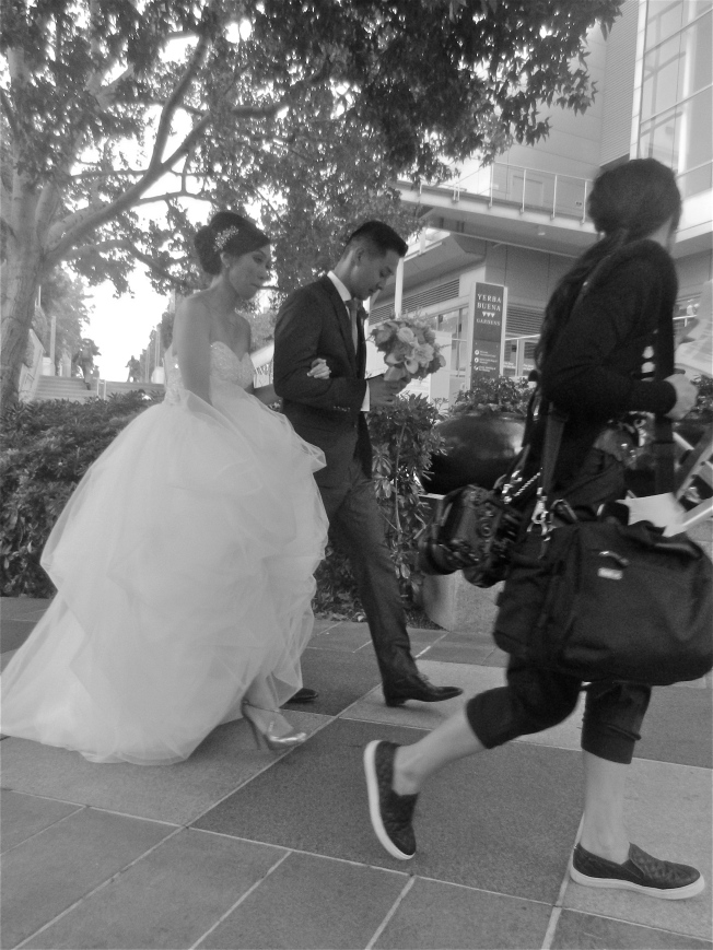 The Wedding Party & Photographer, Yerba Buena Center, San Francisco
