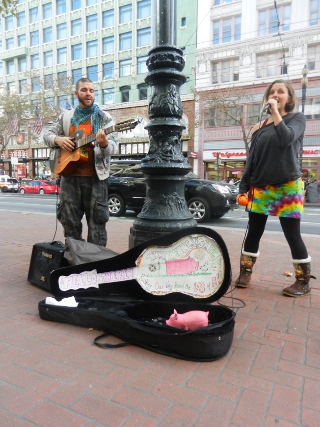 Timmy The English Pig Busking Our Way 'Round the U S of A!