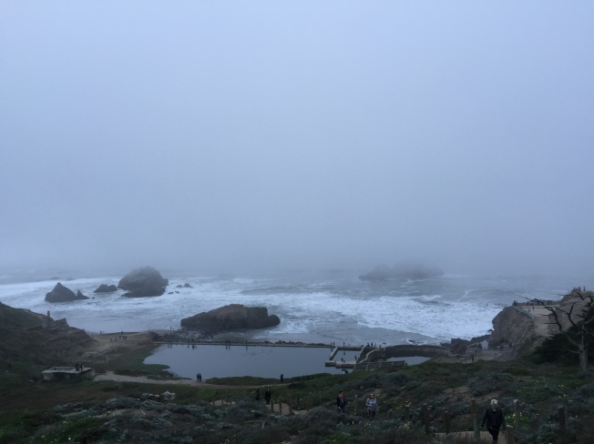Seal Rocks, San Francisco, California, 19 January 2015, 4:49:53 p.m.