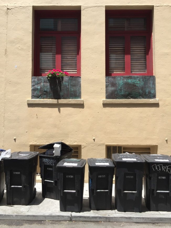 Flowers & Garbage Bins, Redwood Alley, San Francisco, California, 3 June 2015, 1:37 p.m.