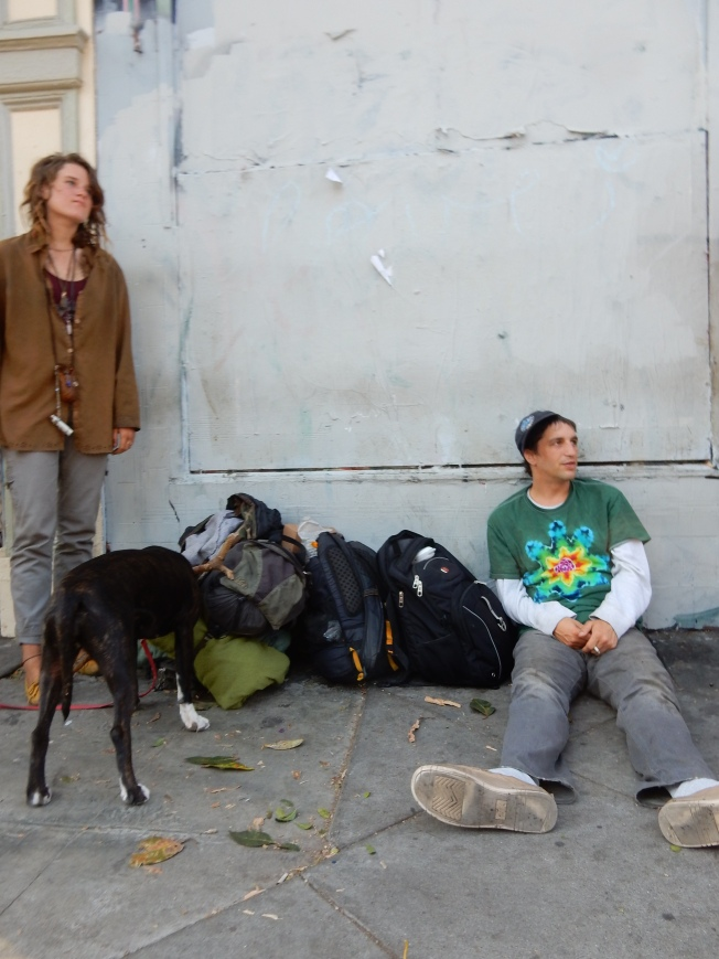 Dogs & People, Haight Street, 2 August 2015